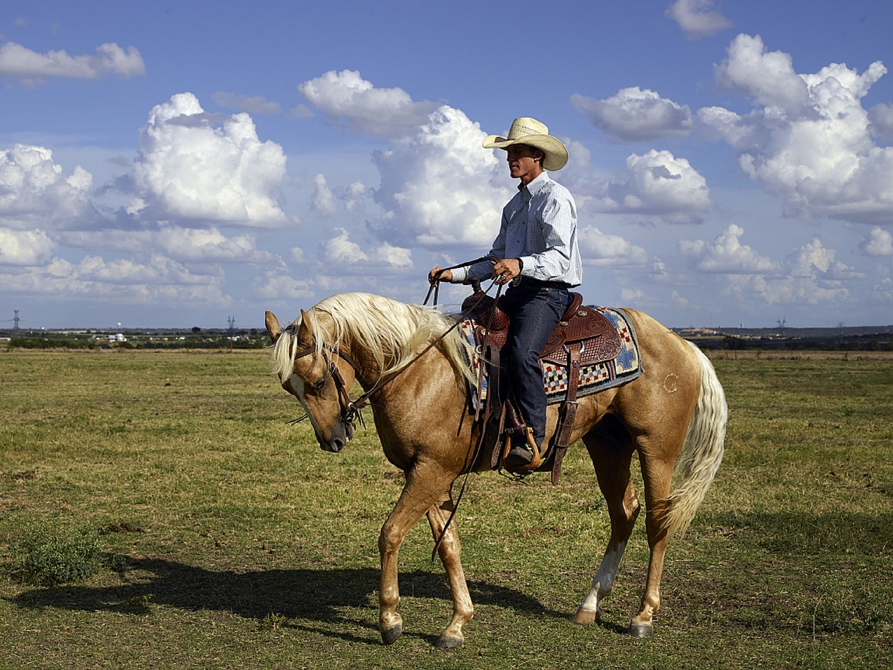cowboy-746992_1280